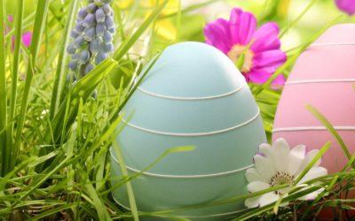 Menu di Pasqua – Siamo al Completo